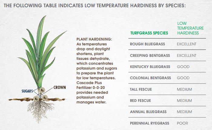 Low Temp Hardiness